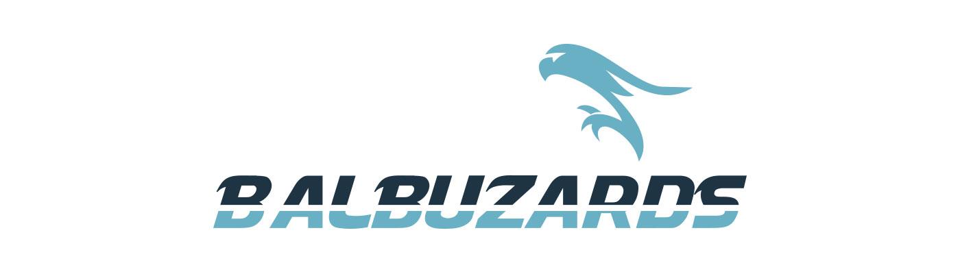 Logo Balbuzards